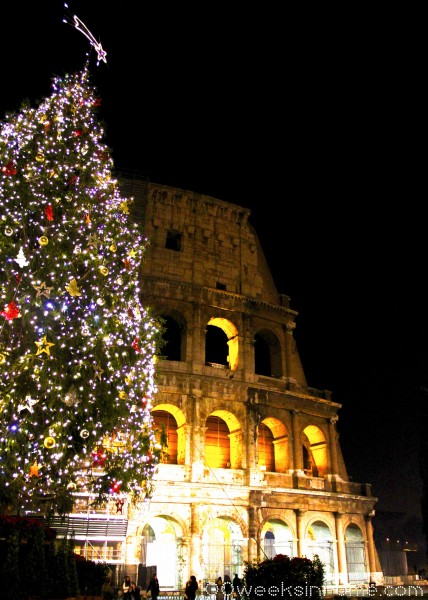 Christmas tree at the Colosseum.