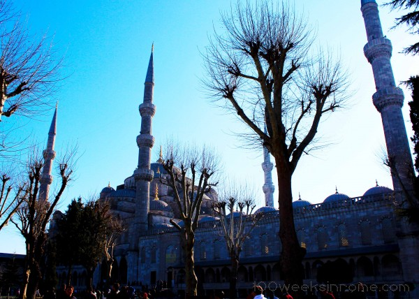 Blue Mosque from gardens