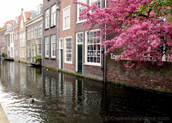 Delft Canal 5