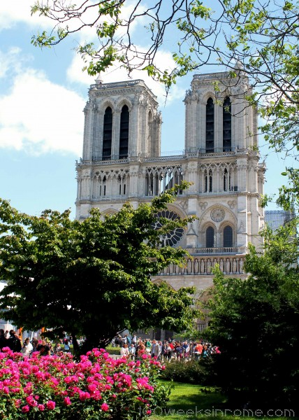 Notre Dame Flowers